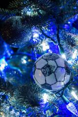 Soccer balls adorn the tree adopted by the Towamensing Soccer Club.