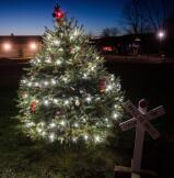 The Rails to Trails tree is topped with a lighted railroad crossing sign at the Walnutport Playground.